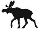 Логотип компании Лосев
